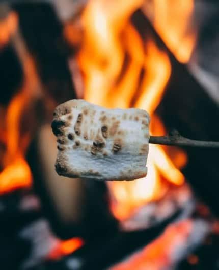 Campfire roasted marshmallow